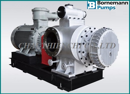 pump-bornemann.